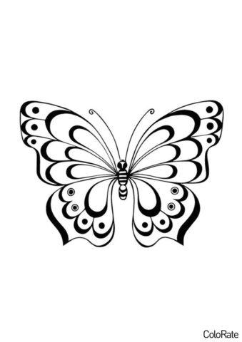 Великолепное насекомое трафарет распечатать на А4 - Трафареты бабочек