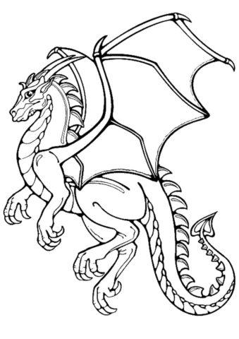Великолепный дракон разукрашка скачать и распечатать - Драконы