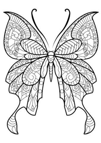 Великолепный махаон - Бабочки бесплатная раскраска
