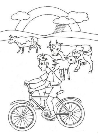Распечатать раскраску Велопрогулка - Лето