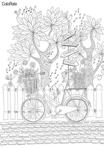 Бесплатная раскраска Велосипед, деревья, птички - Велосипеды