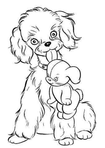 Верный друг принёс игрушку (Собаки и щенки) раскраска для печати и загрузки