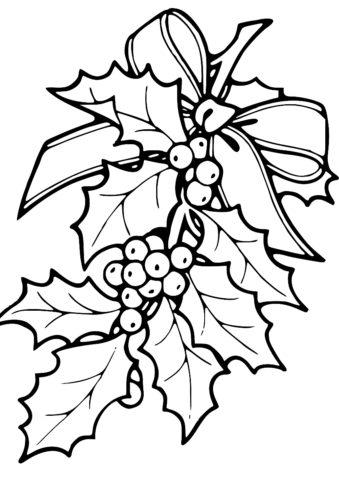 Распечатать раскраску Ветка остролиста - Листья