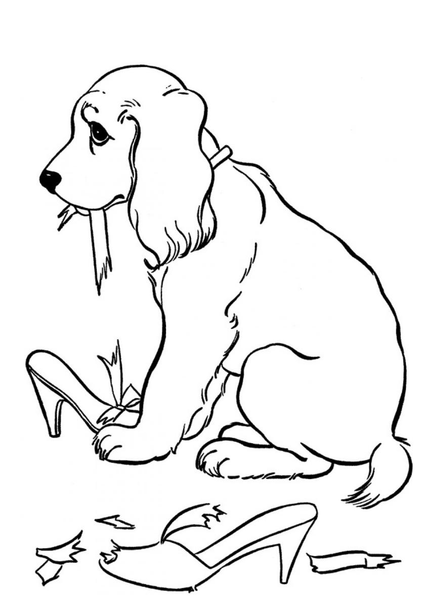 Раскраска Виновник порваных туфель распечатать | Собаки и ...