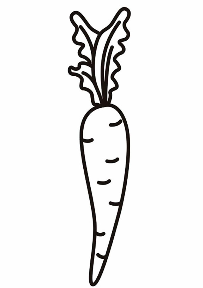 Раскраска Вита Лонга распечатать | Морковь