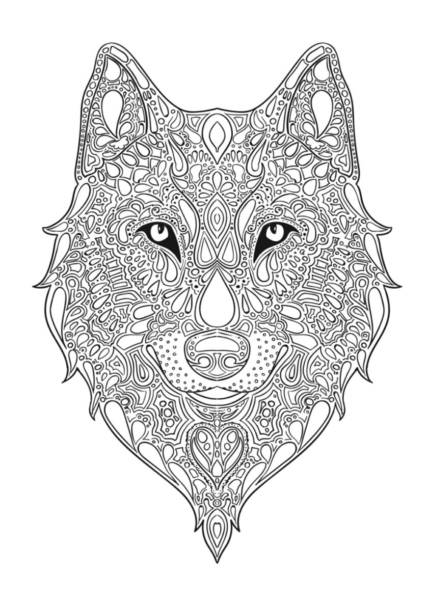 Раскраска Волчья голова антистресс распечатать | Волки
