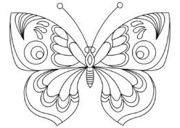 Распечатать раскраску Воздушный мотылек - Бабочки