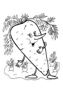 Раскраска Выращивание друзей распечатать на А4 - Морковь
