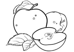 Разукрашка Яблочный натюрморт распечатать на А4 и скачать - Яблоко