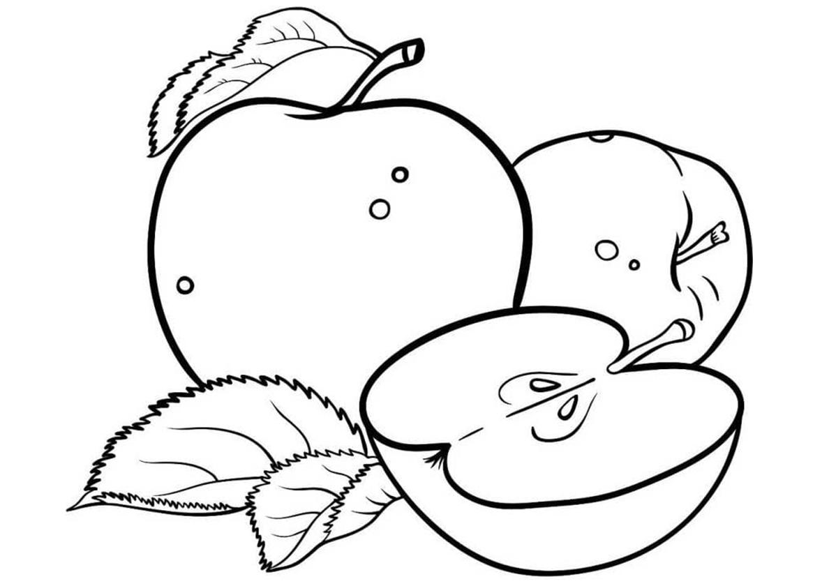 Яблоки картинки раскраски