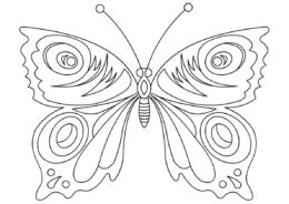 Яркая бабочка (Бабочки) распечатать раскраску