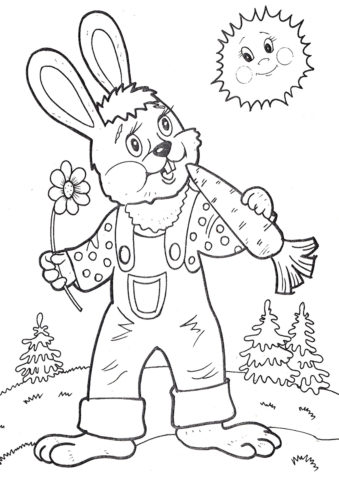 Морковь бесплатная раскраска - Заяц грызет морковку