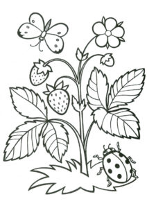 Бесплатная разукрашка для печати и скачивания Земляника с бабочкой и божьей коровкой - Лето